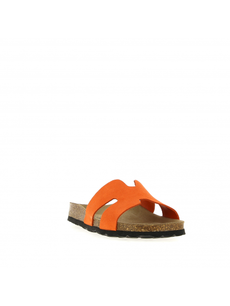 inte21-3496 orange